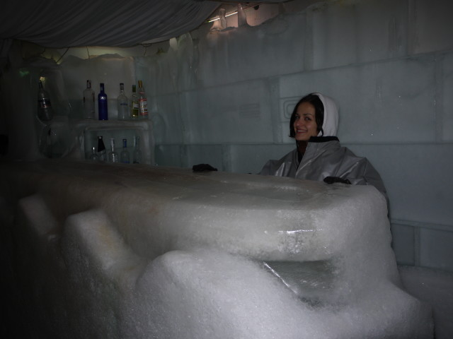 Bar in Ice Club
