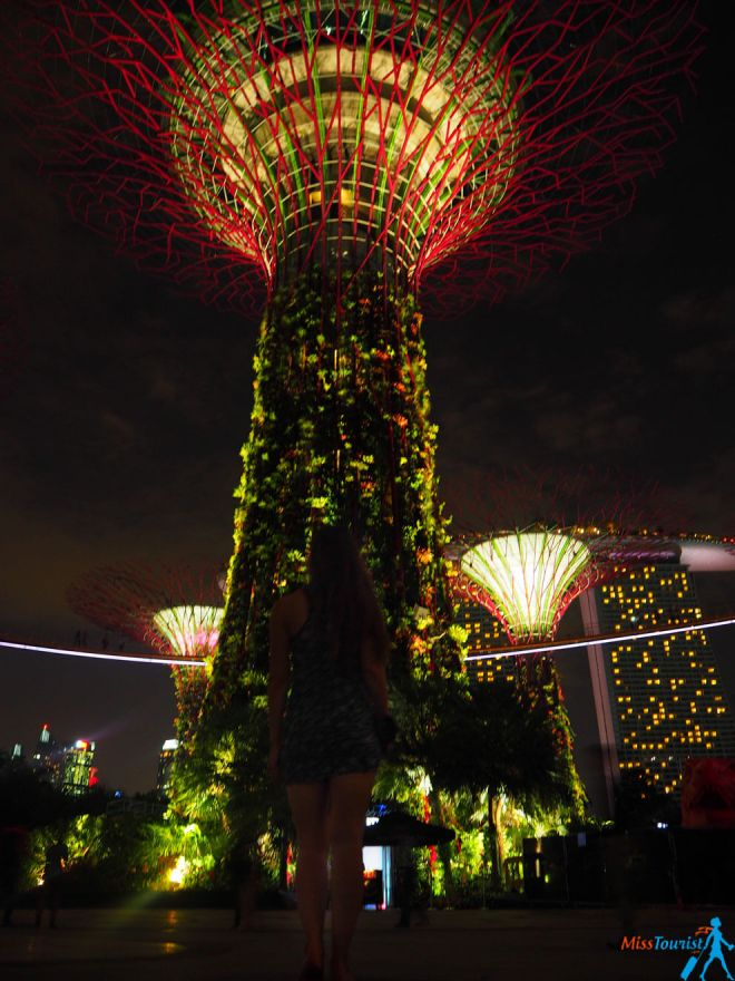 1 things to do in Singapore Super tree show