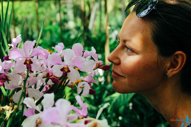 4 Orchid park singapore