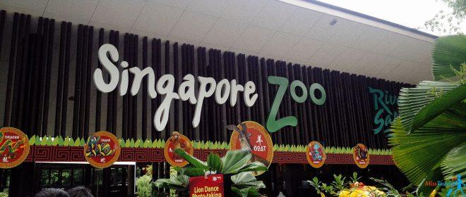 5 singapore zoo entrance