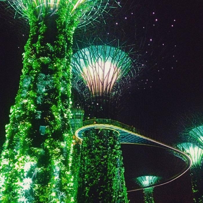 Supertree show Singapore