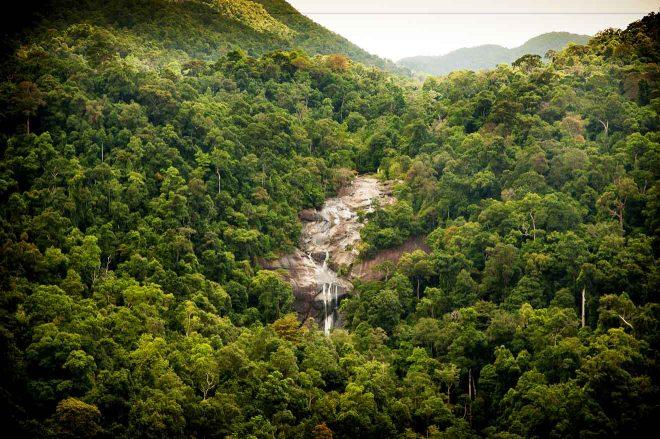 waterfall tropical