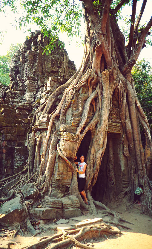 Ta Prohm tree temple Angkor Wat