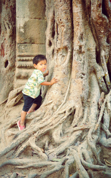 tree temple Angkor Wat baby