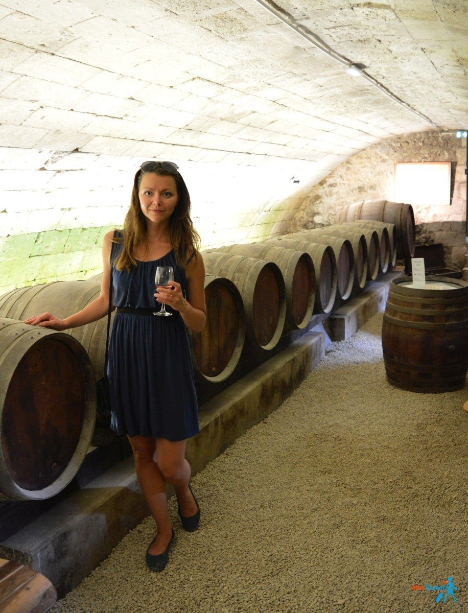wine tasting loire valley chenonceau