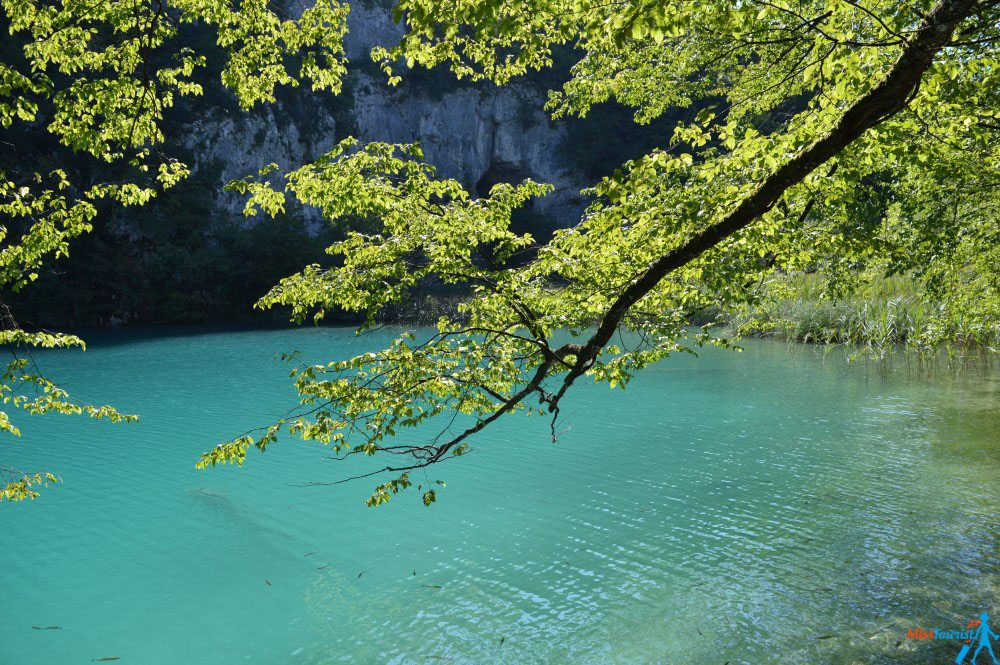 Plitvice lakes park Turquoise water