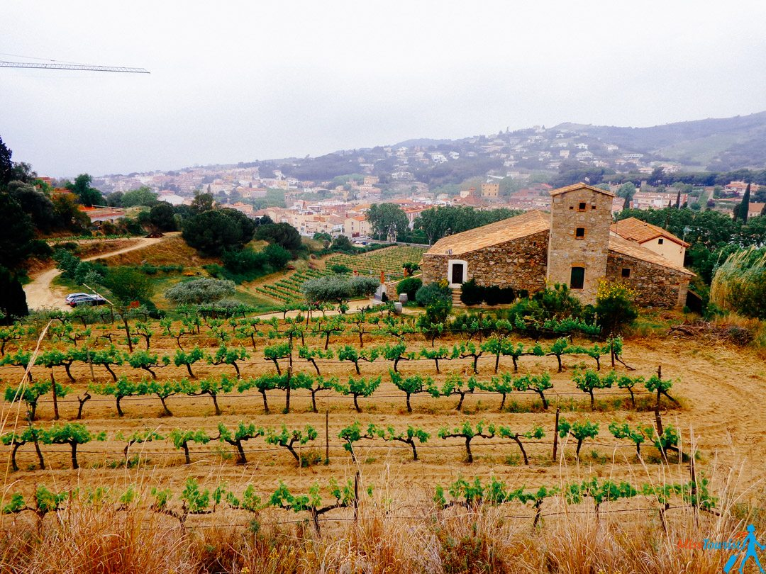 4 Barcelona region Spain winery