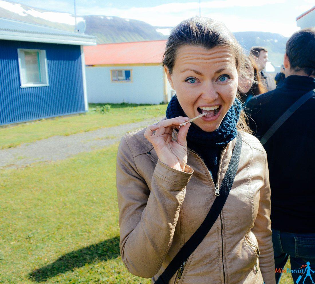 11 Suðureyri food tour