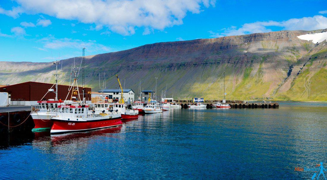 11 Suðureyri
