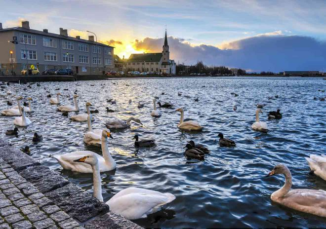 where to go in reykjavik