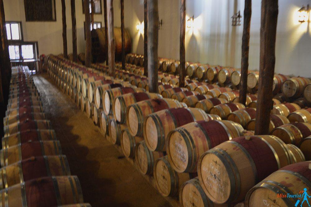 Casa Silva wine cellars Chile