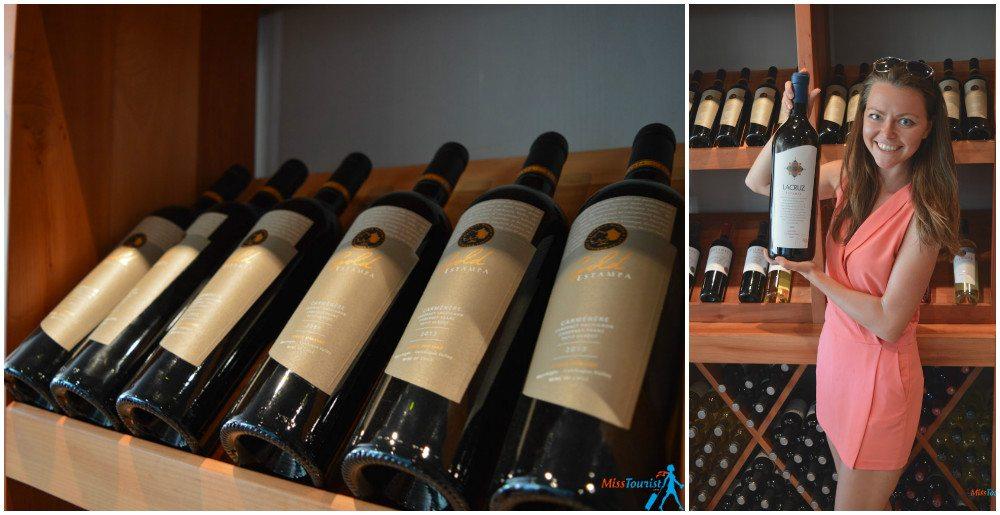 Chile wine tours2