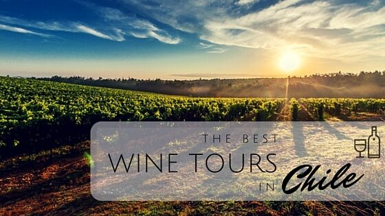 The Best Wine tours in Chile2