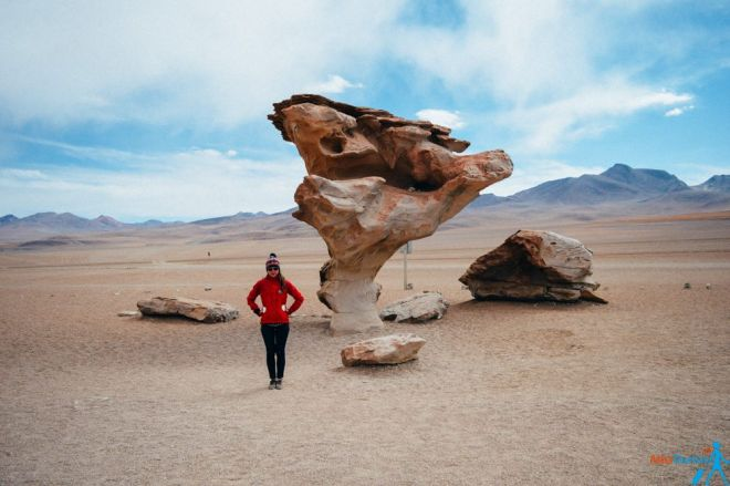 Tree rock Bolivia salt flats packing list bolivia salt flats tour