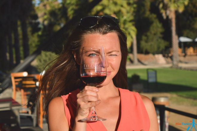 Wine tasting Chile