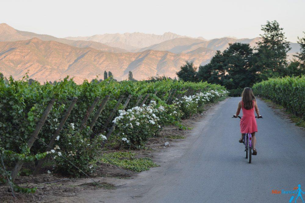 Wine tourism Chile