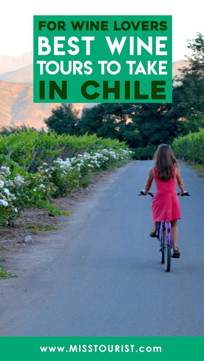 chille wine tours