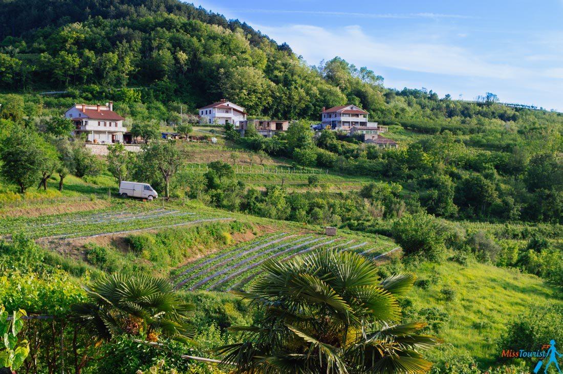istria-region-in-croatia-lanscape