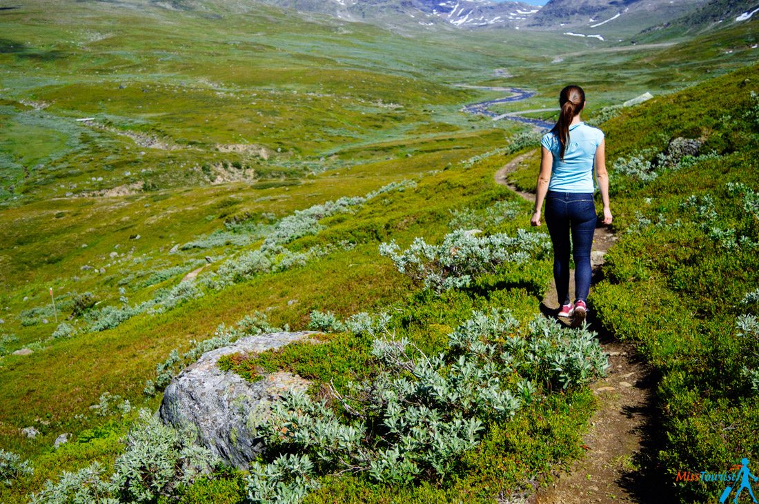 hiking-in-sweden-nature-lapland
