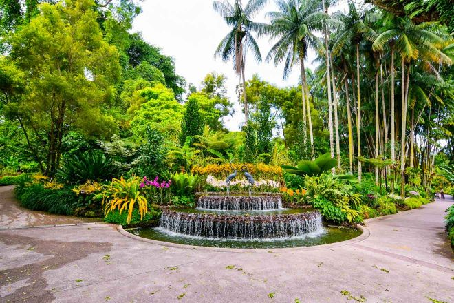 13 Best Things To Do In Singapore botanic gardens 2