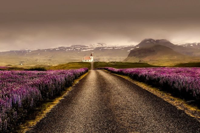 Why you should rent a car in Iceland road travel 8
