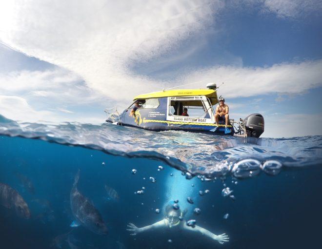 15 Things To Do in Coromandel Peninsula Glass Bottom Boat
