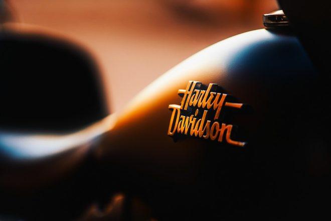 15 Things To Do in Coromandel Peninsula Harley Davidson