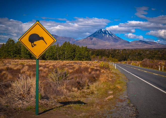 Ultimate South Island Road Trip in New Zealand wiki 2