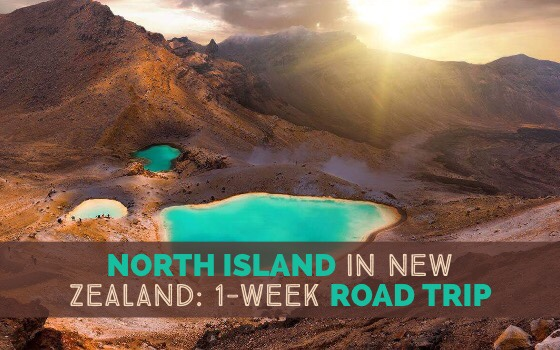 North Island in New Zealand 1 Week Road Trip cover