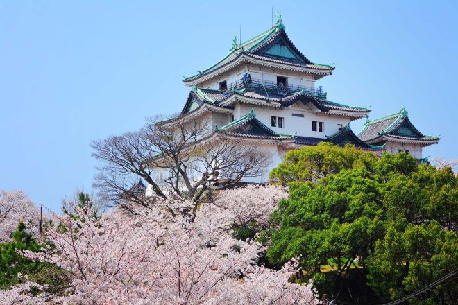 Why You Should Definitely Add Wakayama To Your Japan Itinerary Wakayama Castle cherry blossom
