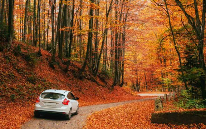 8 things you should know before renting a car in Canada scenery