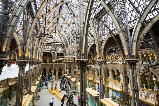 11 Things to do in Oxford oxford natural history museum interior
