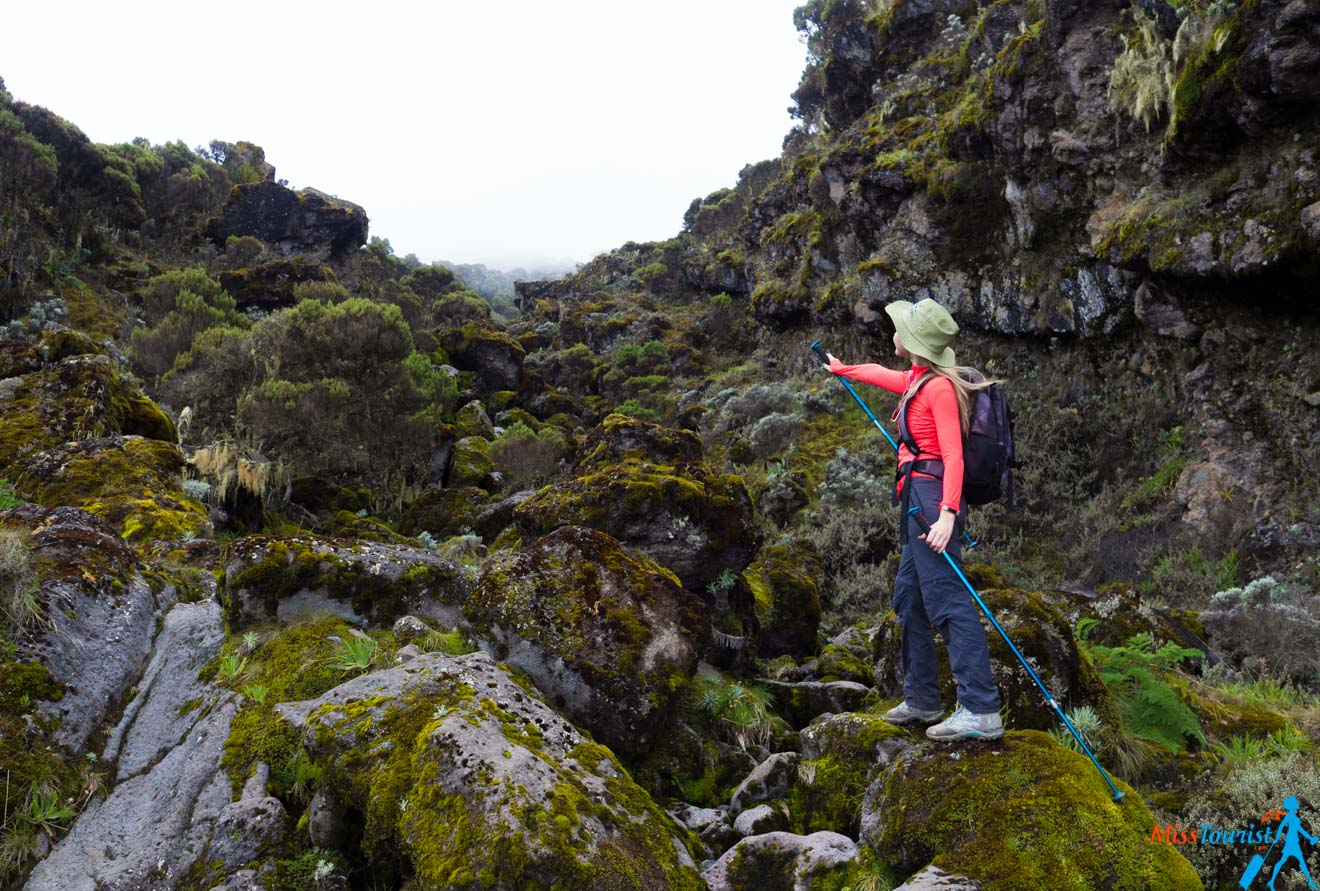 Climbing Kilimanjaro – 7 Things You Should Know Before You Go 18