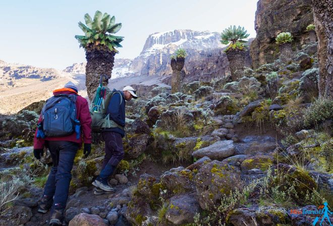 Climbing Kilimanjaro – 7 Things You Should Know Before You Go 28