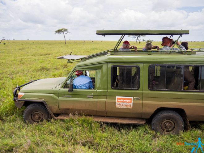 How To Plan A Perfect Safari In Tanzania – 7 Things You Need To Know 2