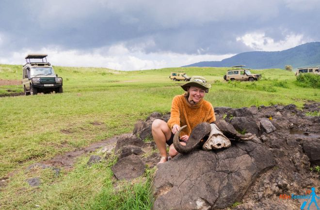 How To Plan A Perfect Safari In Tanzania – 7 Things You Need To Know 22