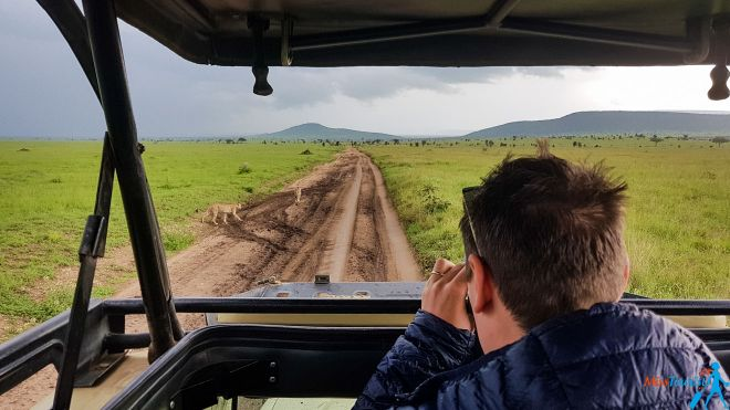 How To Plan A Perfect Safari In Tanzania – 7 Things You Need To Know 30