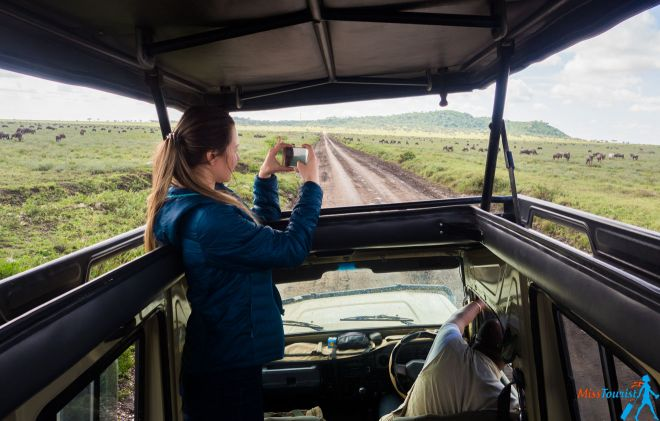 How To Plan A Perfect Safari In Tanzania – 7 Things You Need To Know 6