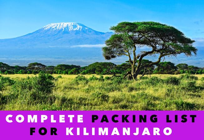 mount kilimanjaro landscape