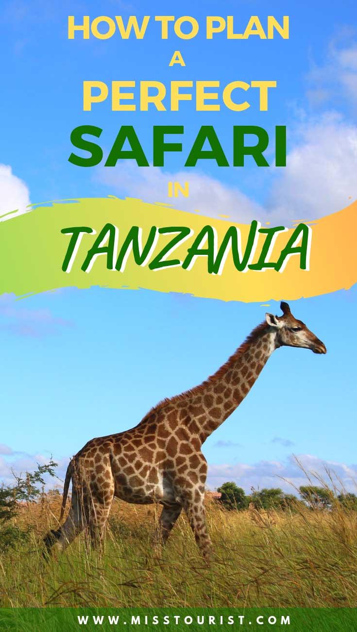 perfect safari trip tanzania