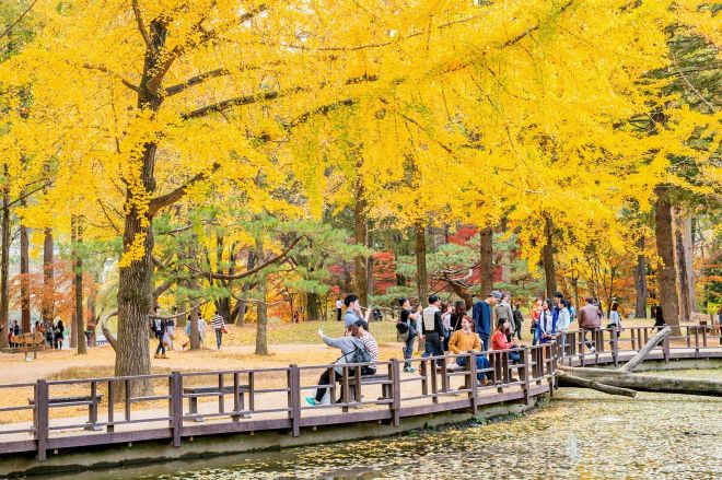 unique things to see in seoul
