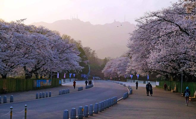 what to see in seoul