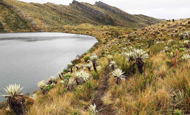 places to visit in bogota