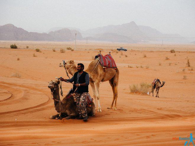desert camel man