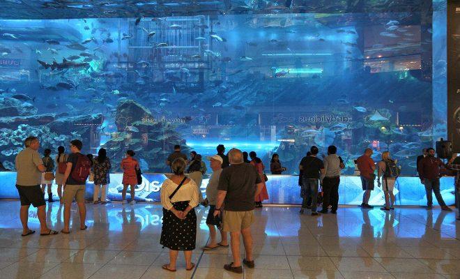 people in dubai mall
