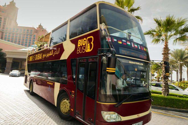 duba touristic bus