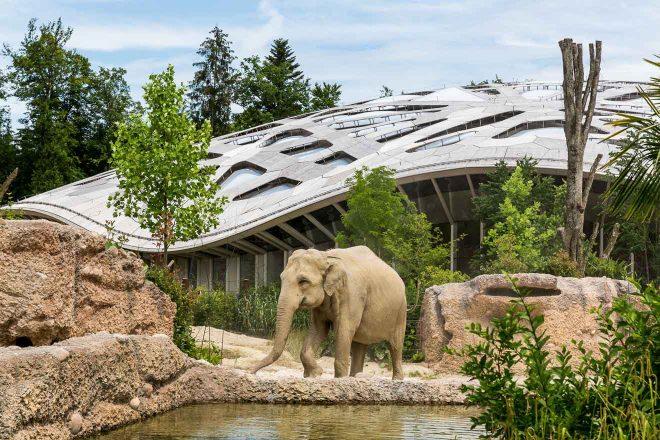 zoo in swiss