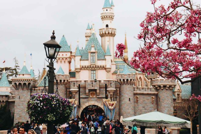 disneyland world