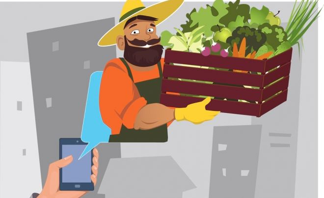 food delivery online from home groceries