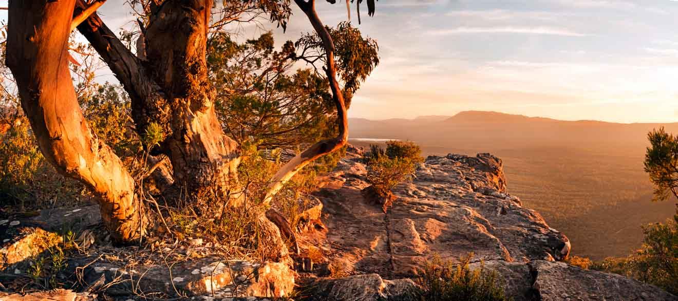 Grampians hiking tour - Australian Bush landscape Grampians National Park